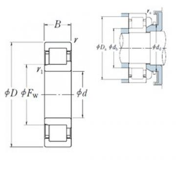 95 mm x 240 mm x 55 mm  NSK NJ 419 cylindrical roller bearings