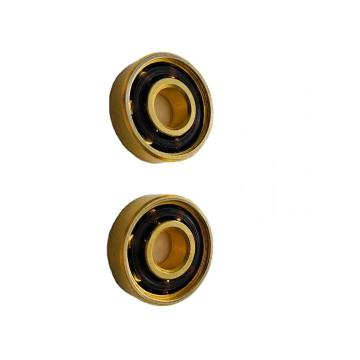 High Precision 608zz- 6206-6210 Zz 2RS Deep Groove/Pillow Block/Insert/Thrust Ball Bearing Bearing Steel Material Ball Bearing