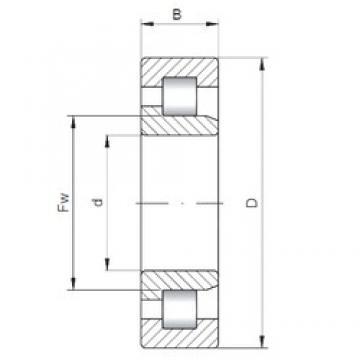 110 mm x 280 mm x 65 mm  Loyal NJ422 cylindrical roller bearings