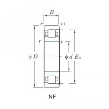 95 mm x 240 mm x 55 mm  KOYO NF419 cylindrical roller bearings